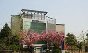 서울 일원동 역세권 9층 상가빌딩 60억 등 15건
