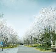 경의선 공원 산책로