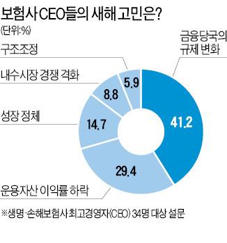 보험사 CEO 34명 '내년 사업계획' 설문…월 3만원대 중저가 건강보험 쏟아진다     한경닷컴