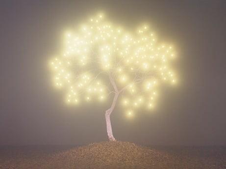 Tree of Life #2-10