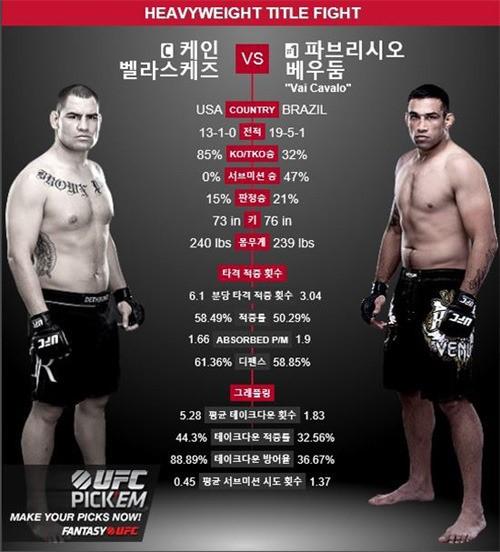 UFC / UFC 사진=UFC 제공