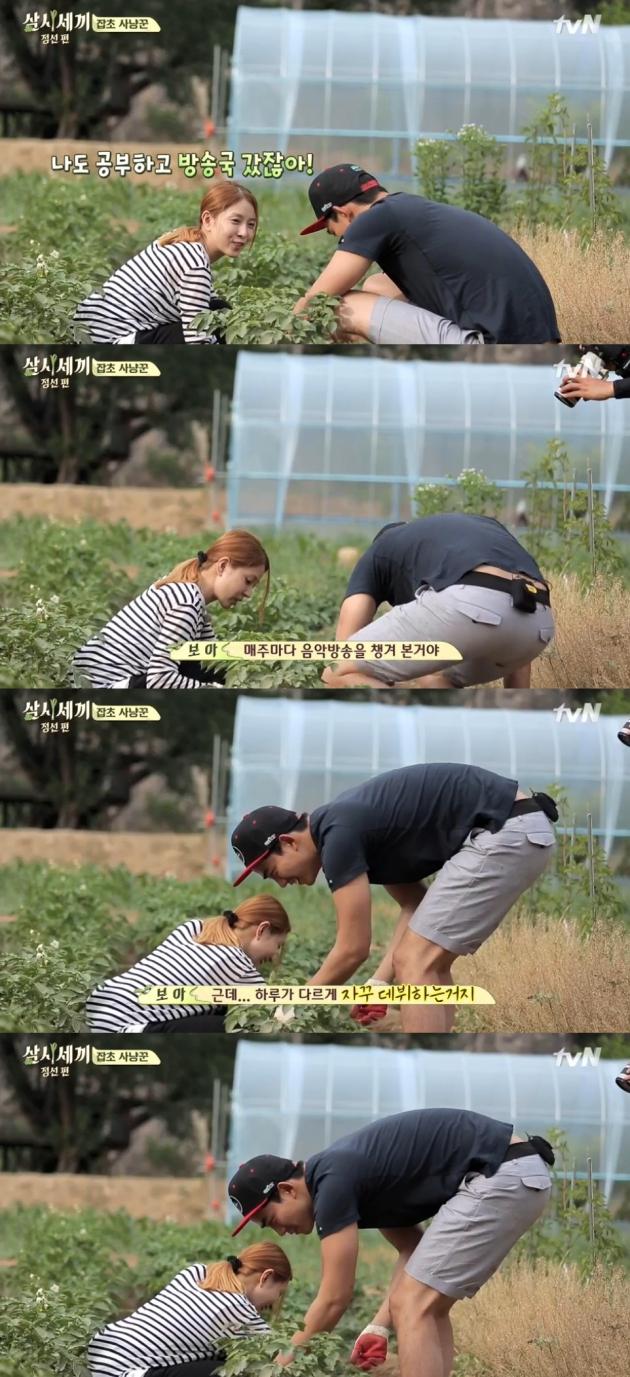 삼시세끼 보아 / 삼시세끼 보아 사진=tvN 방송 캡처