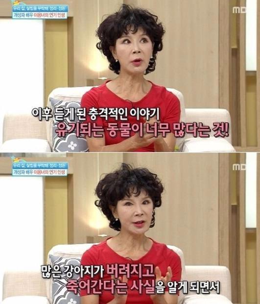 이용녀, 유기견 100마리 키운 이유가…'안타까워'(사진=기분좋은날 이용녀 캡쳐)