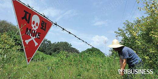 지뢰지대 표시판 앞에서 해마루촌 주민이 잡초를 뽑고 있다.
