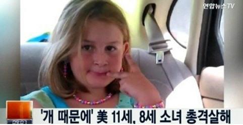 8세 소녀 총격 살해 /연합뉴스TV