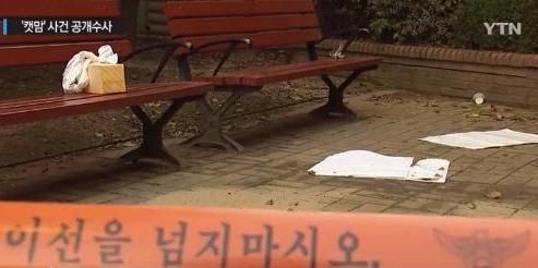 용인 캣맘 용의자 초등학생  /YTN