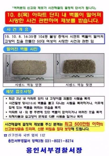 용인 캣맘 사건 벽돌 피해자 DNA만 검출