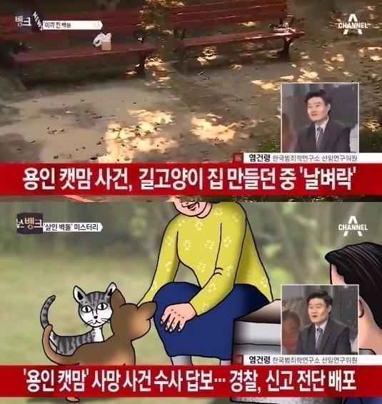 용인 캣맘 사망사건 / 사진 = 채널A 방송 캡처