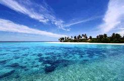 몰디브 국가 비상사태 몰디브 국가 비상사태
