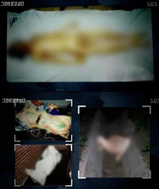 그것이 알고싶다 노들길 살인사건 / 사진 = SBS 방송 캡처