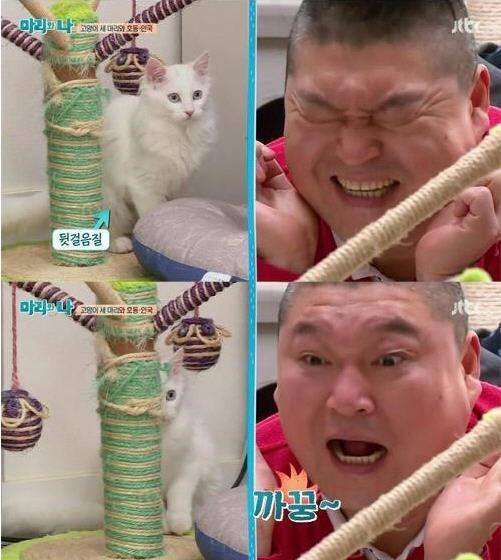 '마리와 나' 강호동 서인국/JTBC