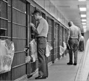교도소와 인프라 투자