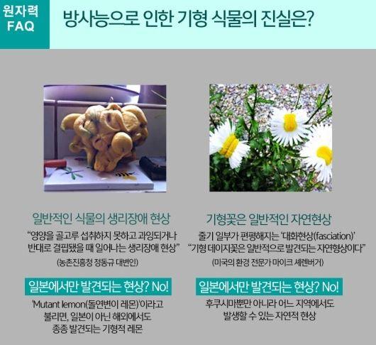 원자력문화재단 블로그 캡처