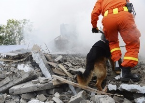 '불의 고리' 에콰도르 지진. 교도소 재소자 180명 탈옥 /사진=게티이미지뱅크