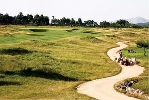골프장 길가에 억세고 질긴 풀이 가득하다.