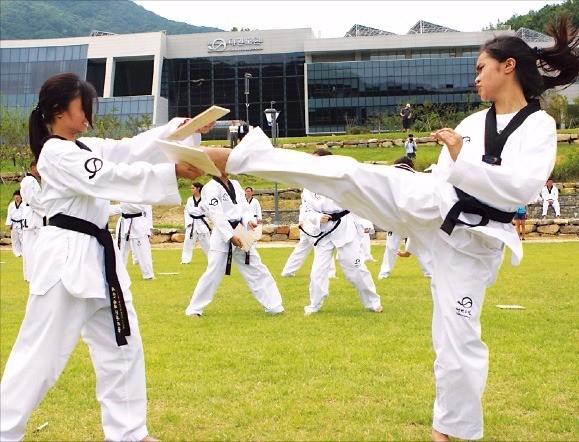 지난해 8월 열린 '2015 세계태권도문화엑스포' 참가자들이 태권도 공개 수업에 참여하고 있다.