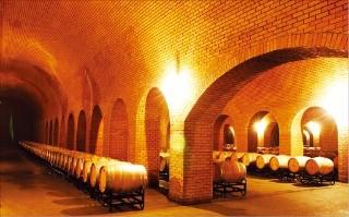 쥔딩골프클럽이 운영하는 와이너리의 와인 저장고
