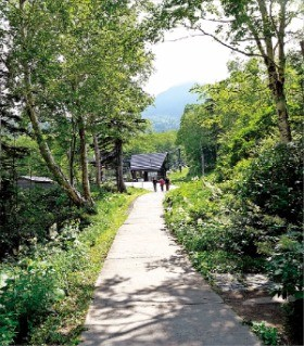 소운쿄 협곡의 구로다케에서 내려오는 길.