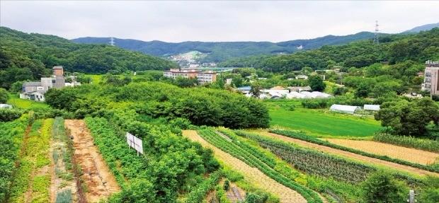 경기 성남시가 공모를 통해 민간과 합작으로 개발 중인 대장동 도시개발구역 전경. 판교신도시와 터널로 연결되는 이곳에는 7323가구의 주택이 들어선다. 성남의뜰 제공