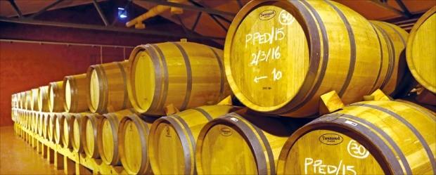핀카 비야크레세스의 와인저장고에 보관된 와인원액