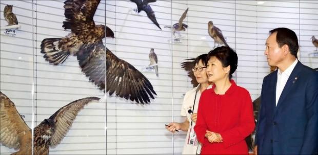 박근혜 대통령이 4일 충남 서산의 서산버드랜드 철새박물관을 방문, 해설사의 설명을 들으며 전시실을 둘러보고 있다. 오른쪽은 성일종 새누리당 의원. 강은구 기자 egkang@hankyung.com
