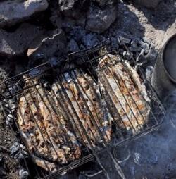 바이칼의 대표 생선인 오무리를 굽는 모습