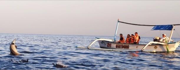 돌고래 투어를 볼 수 있는 로비나비치.