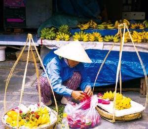 과일을 파는 호이안 시장의 상인