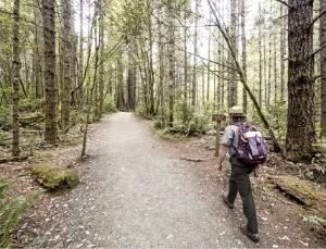 훔볼트 국립공원의 레이디버드 존슨 그로브를 걷는 여행객
