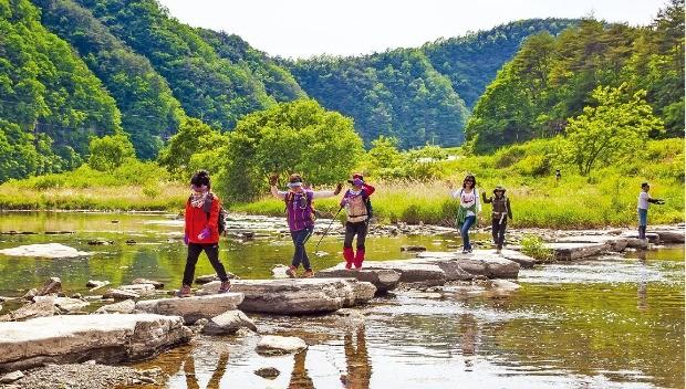 경북 영양 외씨버선길을 걷는 여행객들
