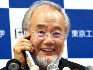 올해 노벨 생리의학상 수상자로 선정된 오스미 요시노리 일본 도쿄공업대 명예교수가 3일 도쿄 남부의 요코하마에 있는 도쿄공업대 연구실에서 수상 관련 기자회견을 하던 중 아베 신조 일본 총리의 축하 전화를 받고 환하게 웃고 있다. 도쿄AFP연합뉴스