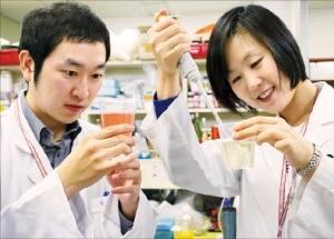 CJ제일제당 식품연구소 연구원들이 신제품 개발을 위한 실험을 하고 있다.