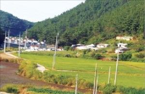 충남 서산시 호숫가 수익형 농장