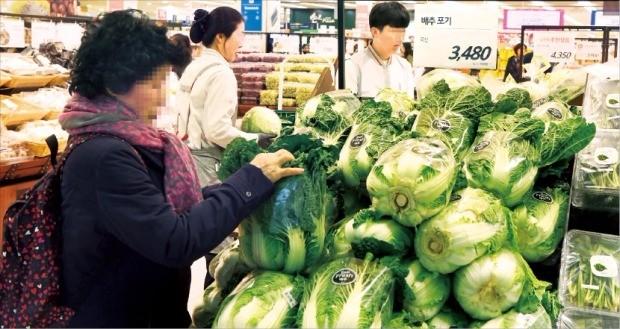 장바구니 물가가 들썩이고 있다. 채소·과일·생선 등 신선식품 가격 오름세가 특히 가파르다. 올여름 폭염 등의 영향으로 지난달 배추가격은 전년 동월 대비 143.6% 급등했다. 허문찬 기자 sweat@hankyung.com