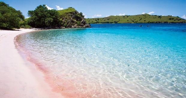 해변의 모래사장이 핑크색인 핑크 비치