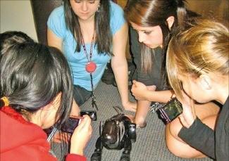 워털루대 학생들이 소니의 강아지 로봇 아이보를 놓고 토론 수업을 하고 있다. 워털루대  제공