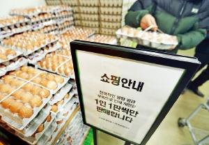 산란계 살처분 1069만마리, AI 후폭풍…계란가격 '비상'