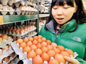 미국산 계란 오늘부터 본격 판매…한판 8490원