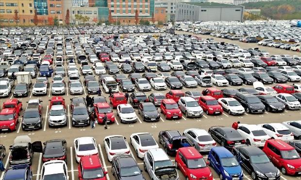현대글로비스 시화경매장에 출품된 차량들이 경매를 앞두고 있다. 현대글로비스 제공