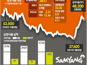 삼양식품 '불닭볶음면' 해외서도 '활활', 구조조정 전문가 영입…실적 기대 '솔솔'