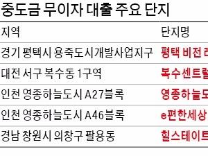 중도금 무이자 대출 '달콤한 당근' 내걸고 분양