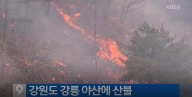 강릉 산불. KBS뉴스 캡처