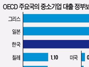 [Focus] 정부가 보증해주는 중소기업 대출 비중…한국은 OECD 국가 중 세 번째로 높아요