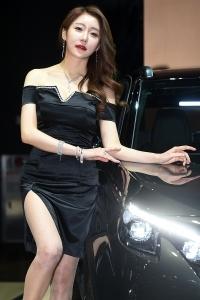 민채윤, '아찔하게 찢어진 의상 입고'(2017 서울모터쇼)