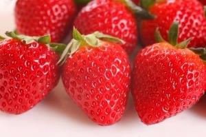 자동차연료 기술로 '철 없는 딸기' 만든 도요타