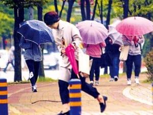 봄비 맞지 마세요…미세먼지로 오염된 비, 피부염·탈모 일으켜요