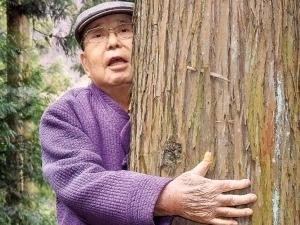 '조센징' 설움 달래려 고향에 심은 편백나무…전국민 쉼터 됐죠