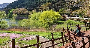 사뿐사뿐 걸어보자…초록이 아우성 치는 초여름의 문턱