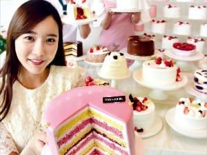 뚜레쥬르 20주년 케이크