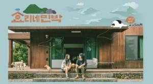 '효리네민박' 촬영 마무리, 12일간의 즐거운 제주도 라이프